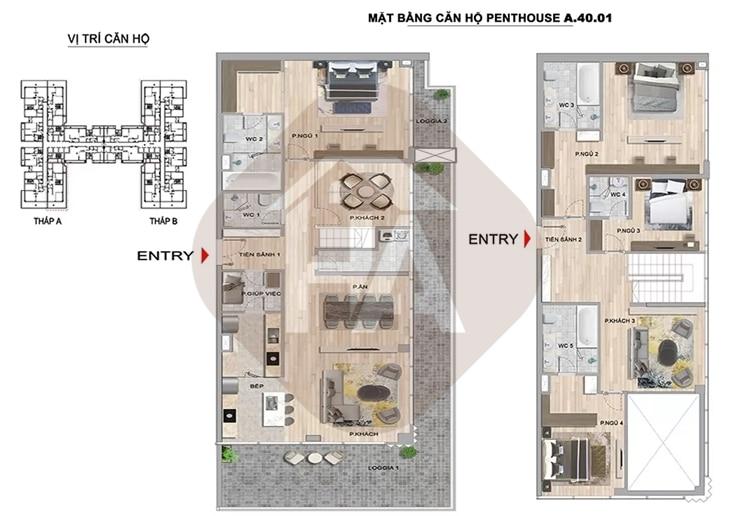 Mặt bằng thiết kế căn hộ Penthouse